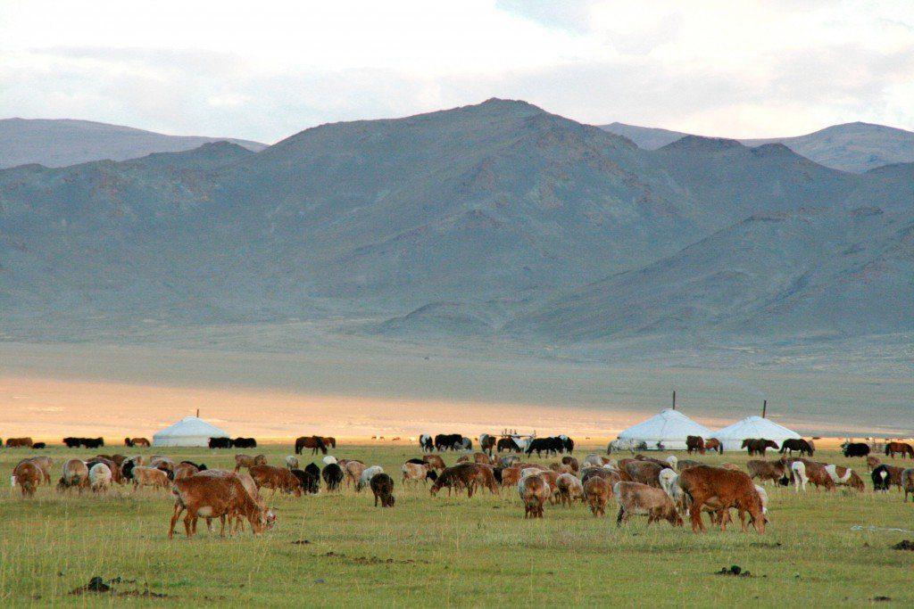 Paysage De Mongolie © Nomindari Shagdarsuren
